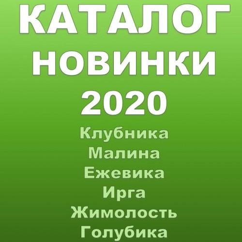 Новинки 2020г.