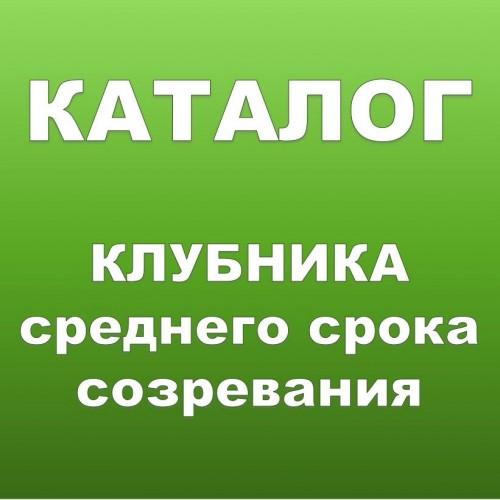 КЛУБНИКА КСД  Среднего срока созревания